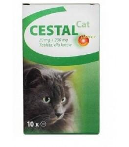 pastile de pisica dupa viermi)