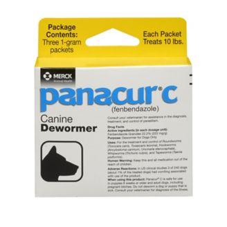 pisica giardia panacur