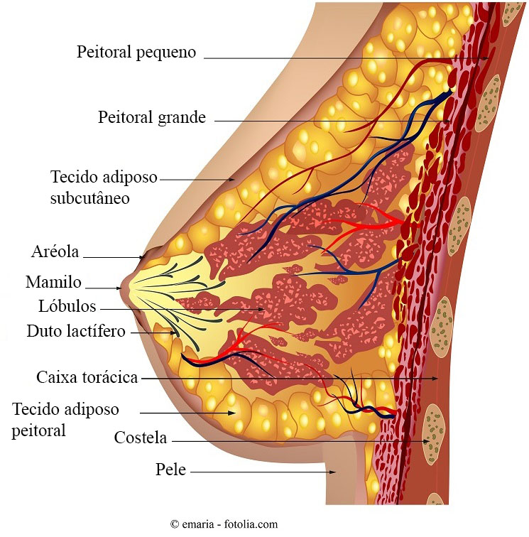 papiloma ductal sintomas