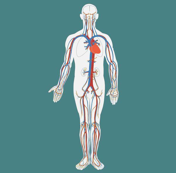 simptome cancer limfatic copii condiloame la bărbați cum se curăță