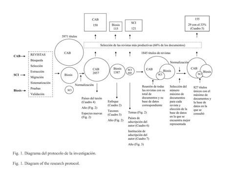 diagrama aschelminthes)