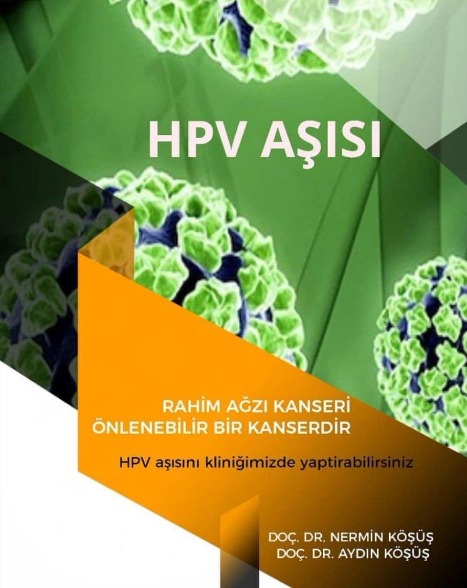 Papilloma virus nedir