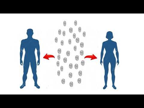 tratamentul giardiei la tejghea pentru oameni papilloma in
