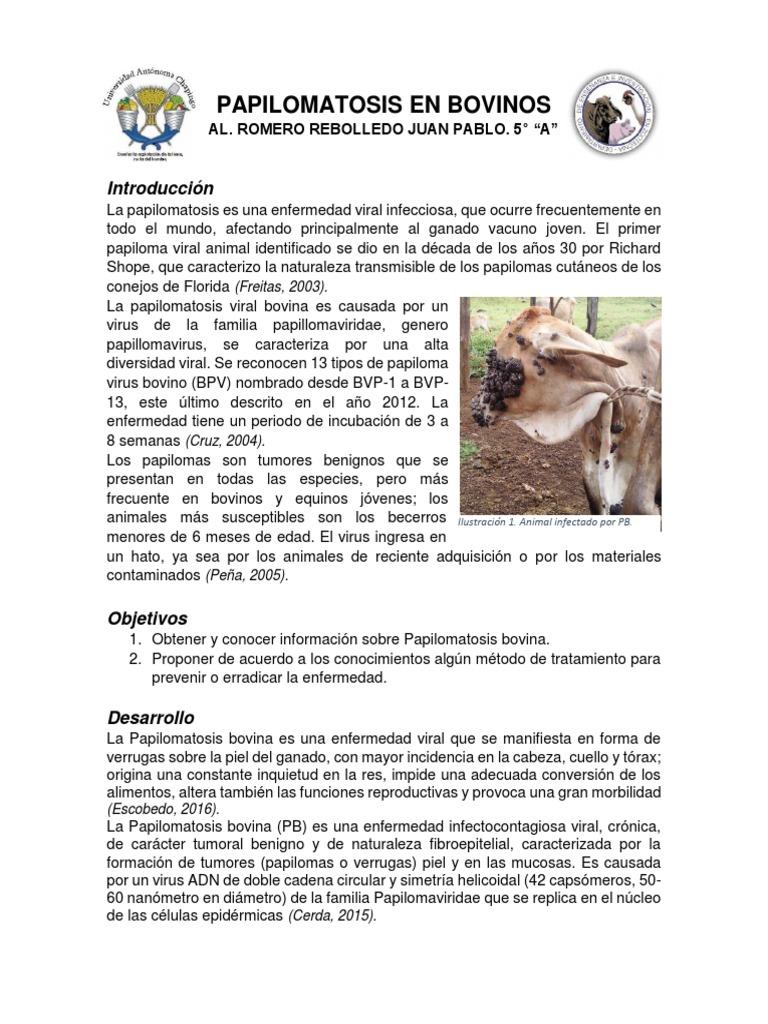 papilomatosis bovina epidemiologia)