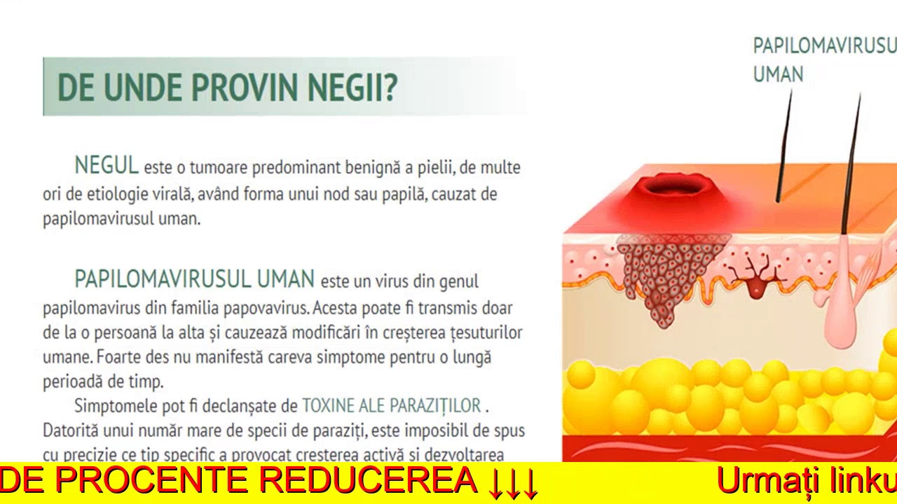 TONIC HEPATIC 50ML DP