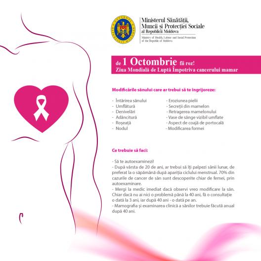 cancerul mamar o lupta continua)
