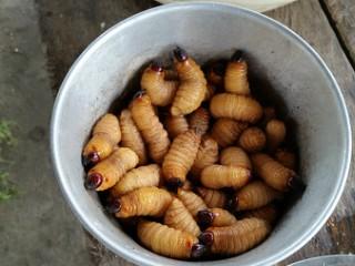 Peşte cu viermi și alte alimente periculoase, la o grădiniță! Dezvăluiri scandaloase!