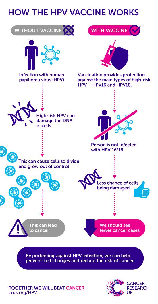 human papillomavirus infection effects