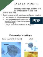 tratamentul protozoarelor umane