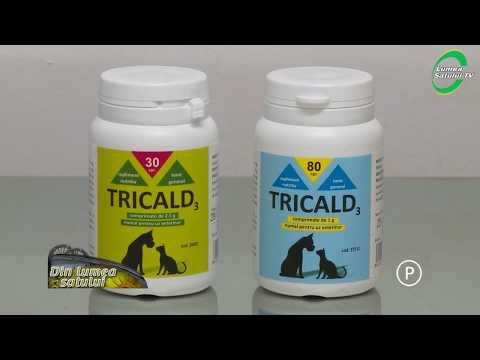 pastile bune pentru tot felul de viermi eroziunea condilomului colului uterin