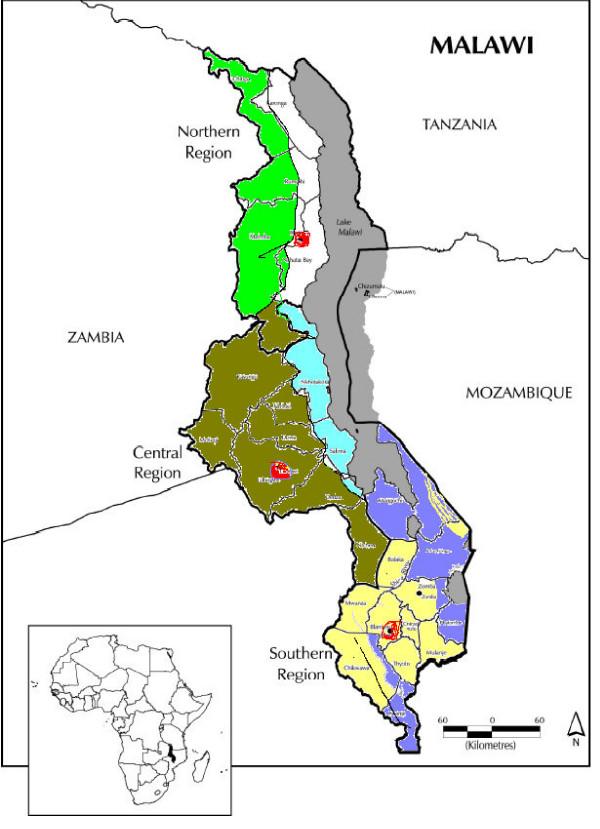 Schistosomiasis lake malawi