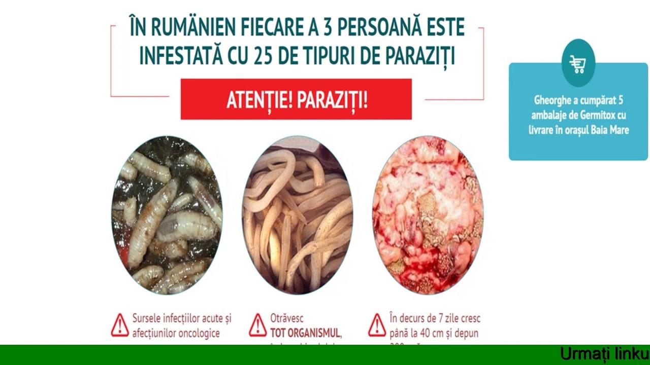 tratament pentru toate tipurile de viermi)