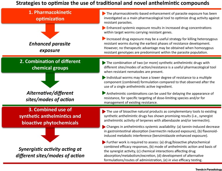 anthelmintic therapy definition)