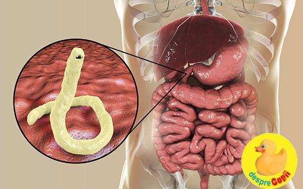 zodia cancerului pareri oxiuri simptome tratament