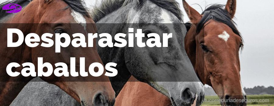 parasito oxiuros en caballos)