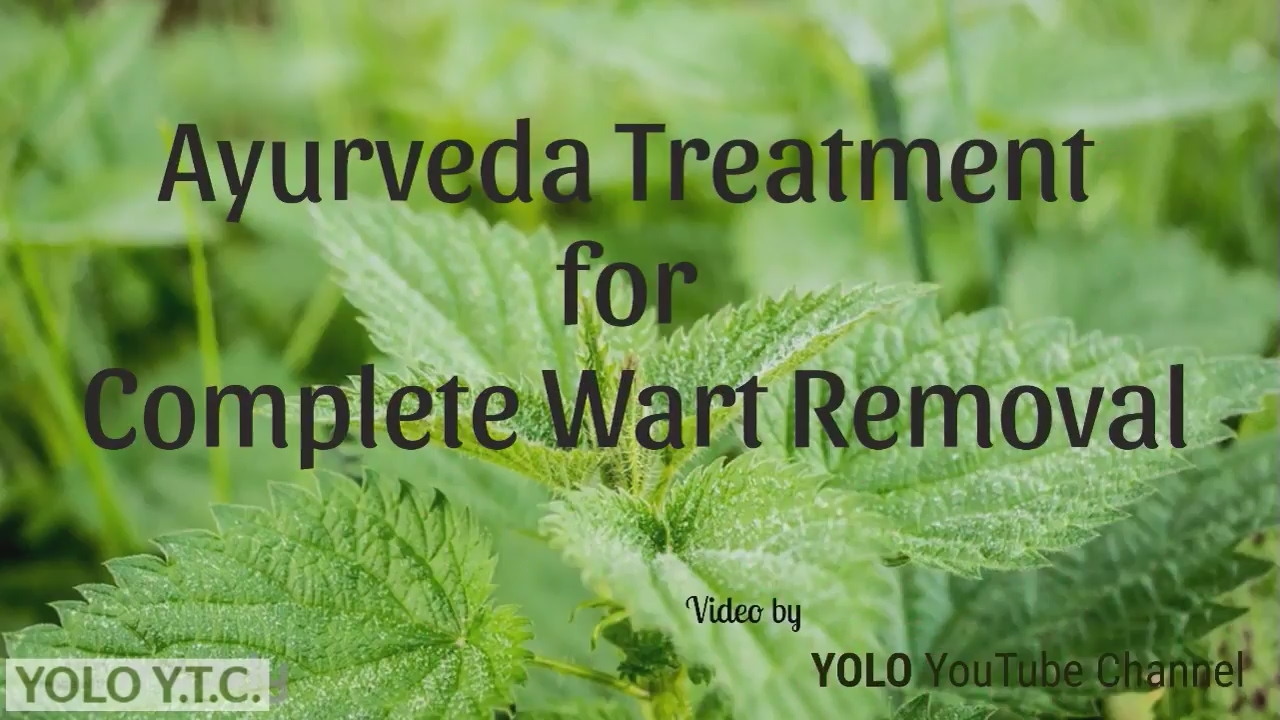 Hpv treatment in ayurveda. Wart treatment in ayurveda