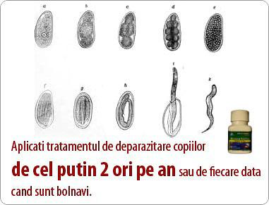 paraziți inelari)