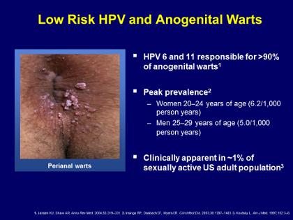 hpv warts high risk)