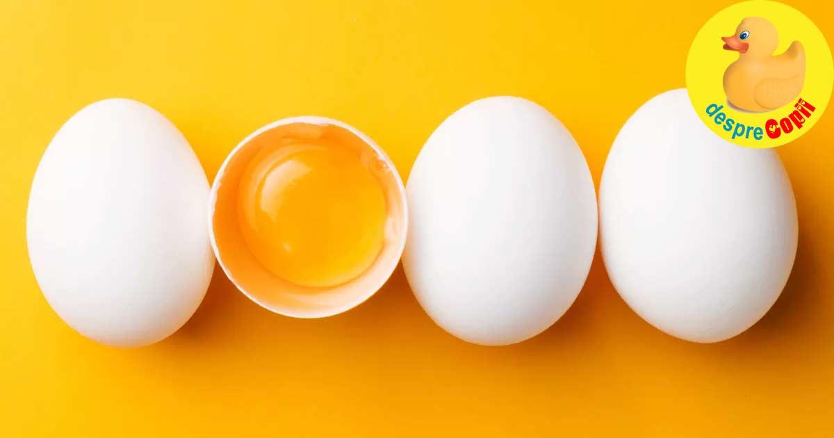 medicamente pentru ouă rotunde