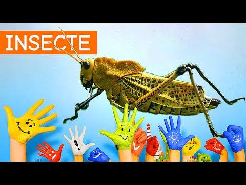 ușor respingător de insecte