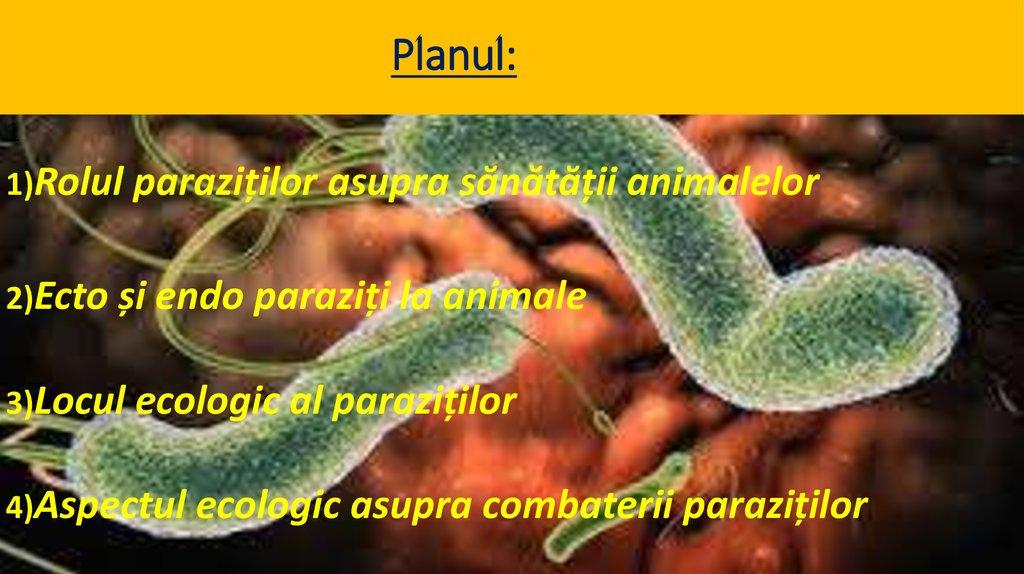 paraziți comuni în materiile fecale umane