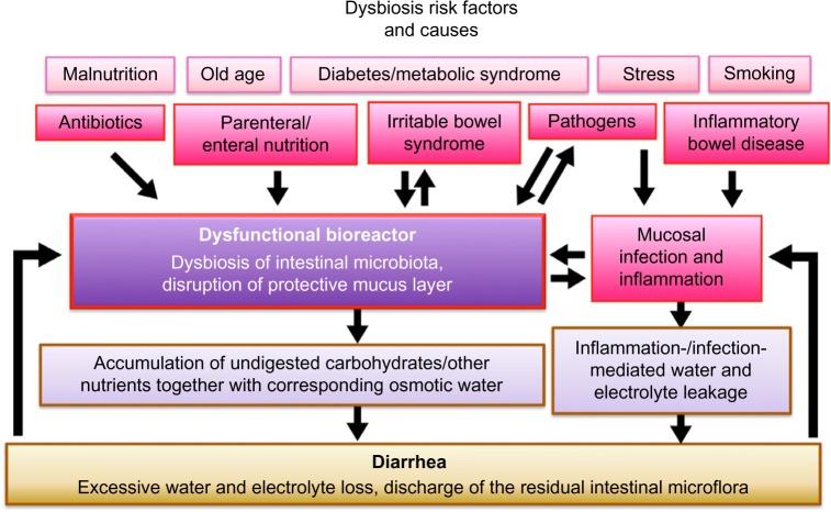 dysbiosis diarrhea viermi pentru astm