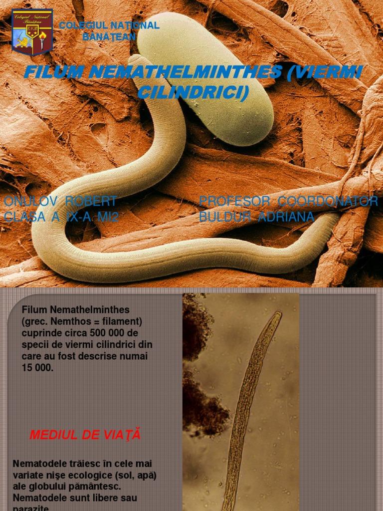 sistem de tratament helmint