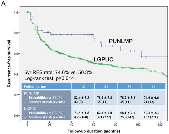 Papillary urothelial neoplasm treatment, Papillary urothelial neoplasm tumors - REVIEW-URI