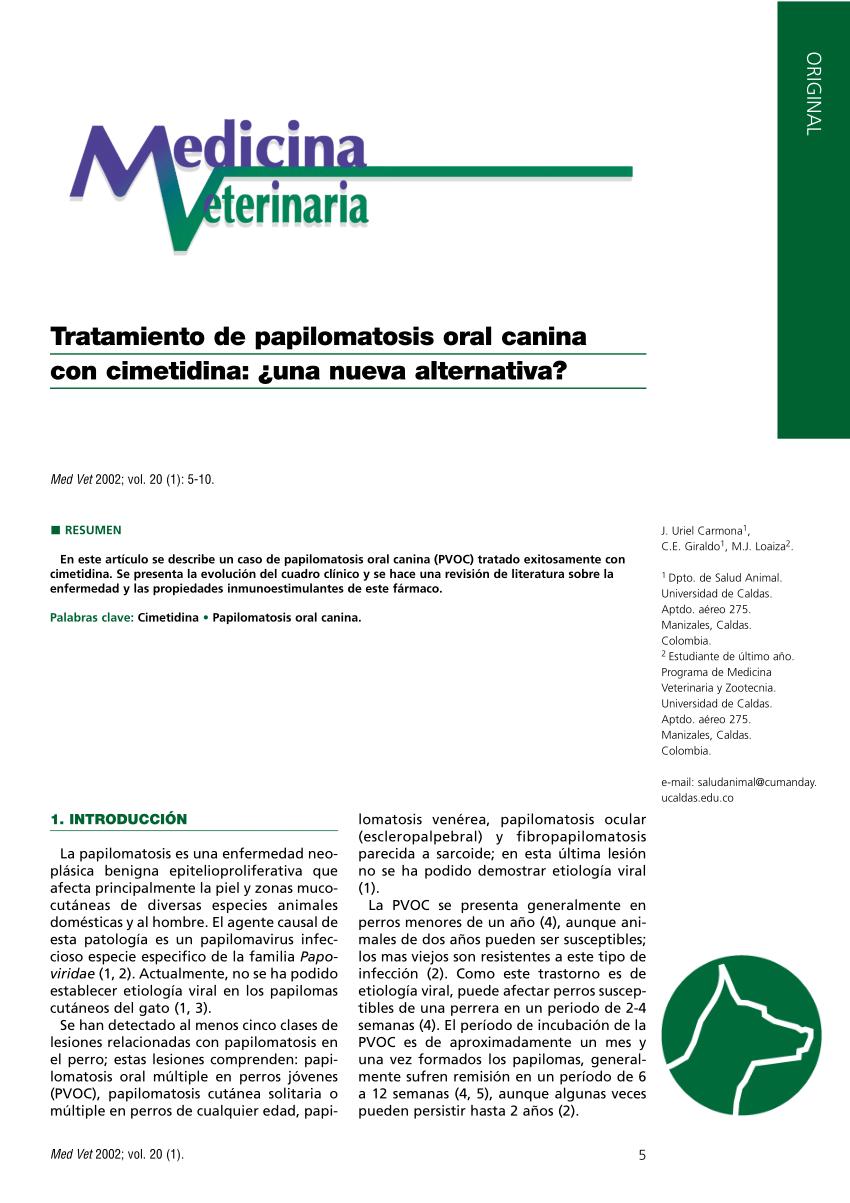 papilomatosis canina tratamiento