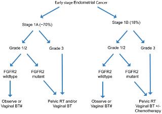 endometrial cancer kras)