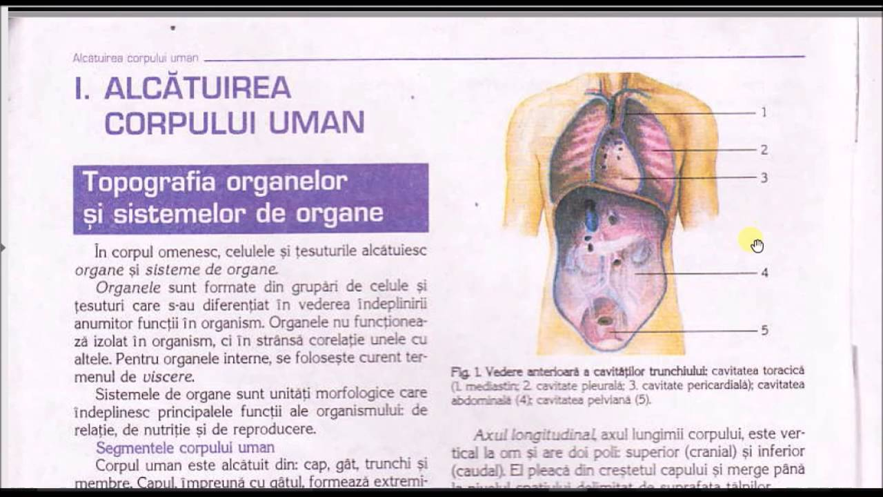 decontaminarea umană)