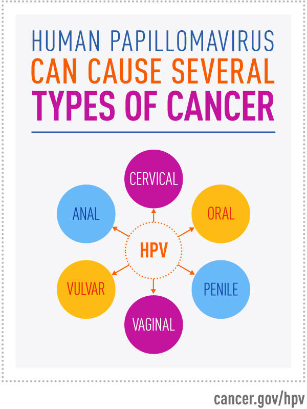 does hpv cause rectal cancer)