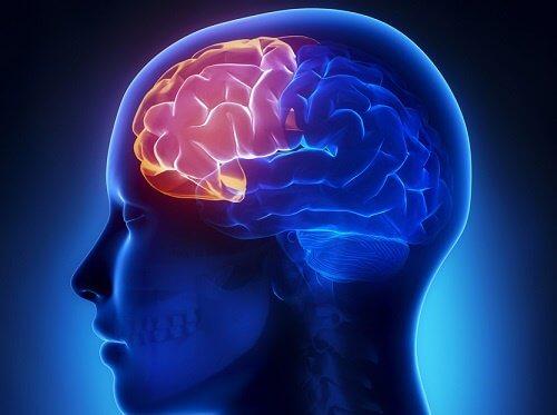 exercițiu de detoxifiere cerebrală)