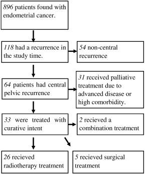 endometrial cancer treatment options)