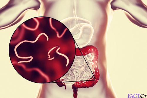 Enterobiasis liver. Anemie d biermer