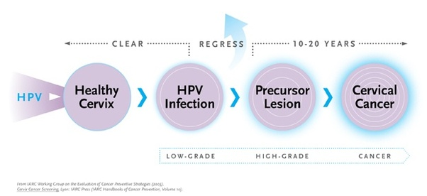 hpv cancer how long)