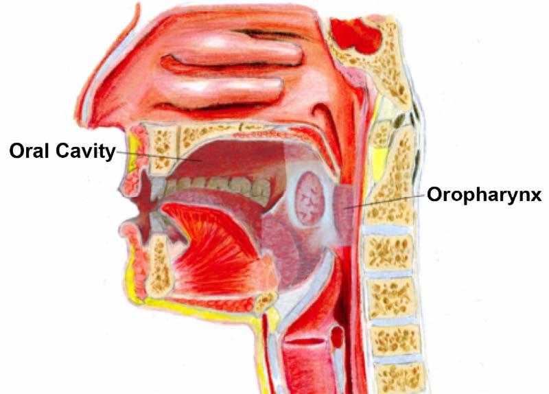 hpv cancer in neck symptoms)