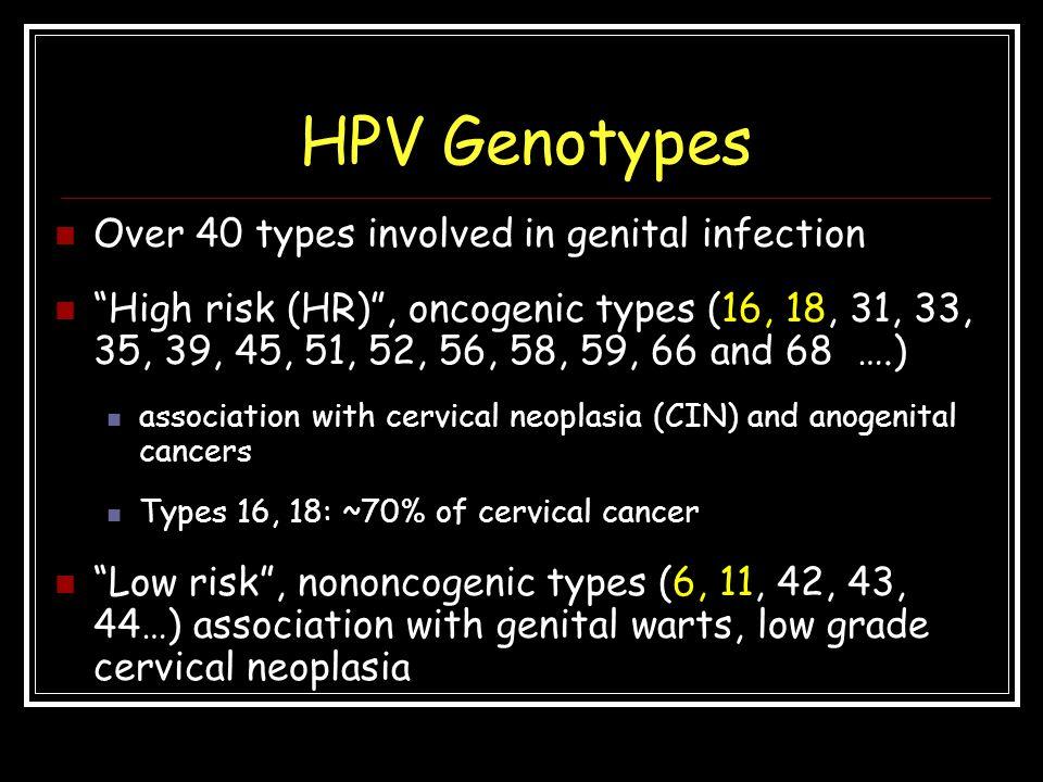 hpv high risk types 31 33 35)