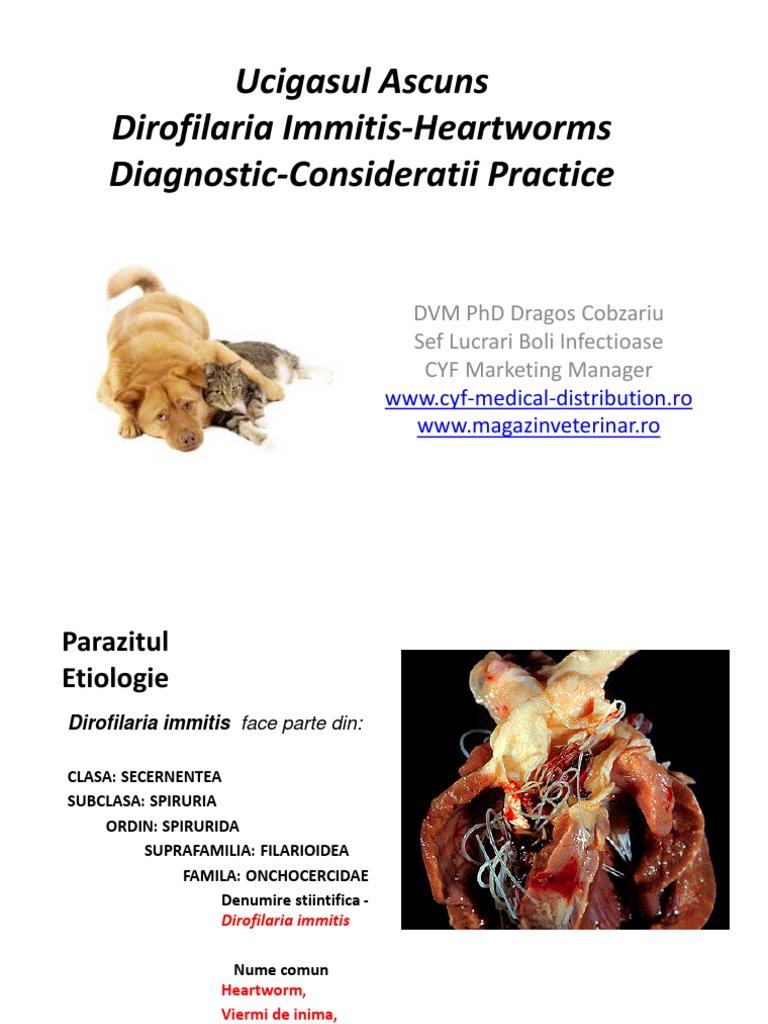 38 Best paraziti images | Sănătate, Remedii naturale, Remedii naturiste