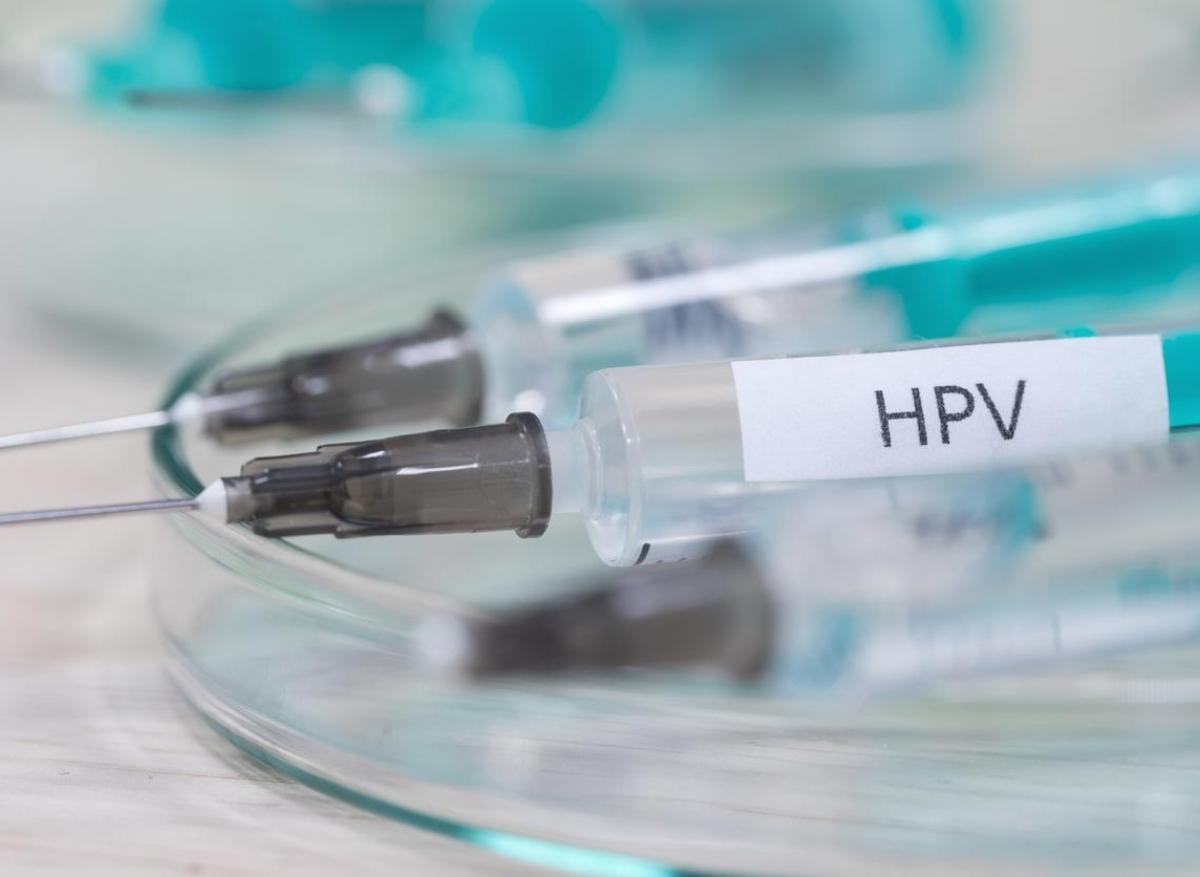origine de papillomavirus humains