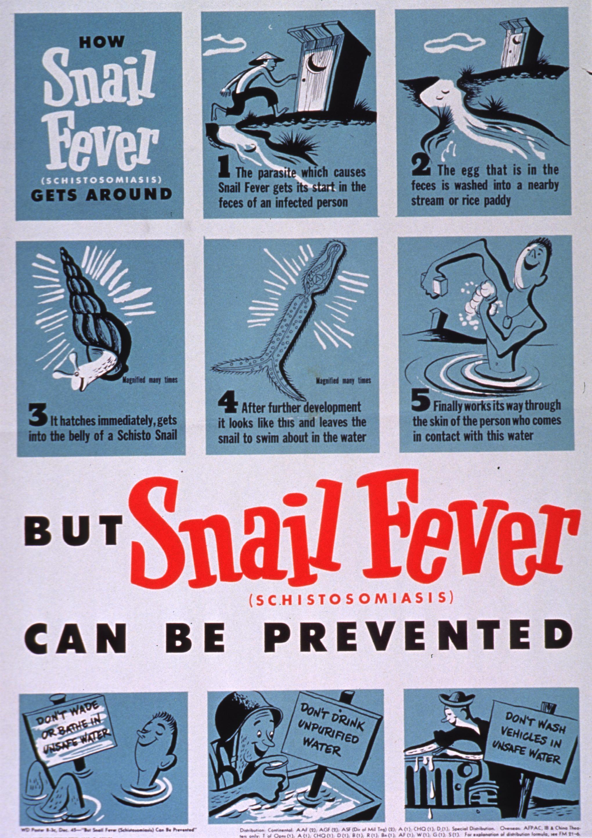 schistosomiasis fever)